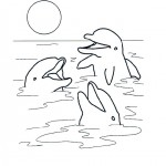 Dolfijnen kleurplaten -